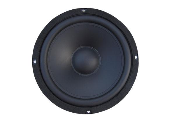 FM-speaker